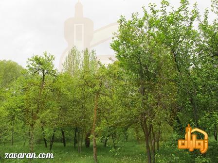 روستای عنبران طرقبه مشهد