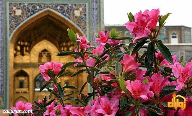 قیمت هتل آپارتمان های مشهد در نوروز 98