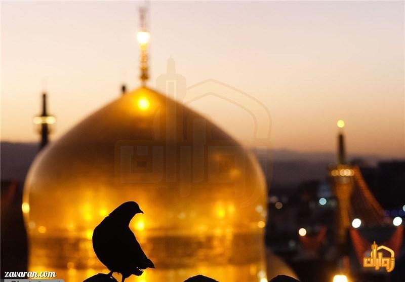 معرفی هتل منجی مشهد